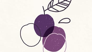 CapucineDinochau-Bigout-photographe culinaire-Lyon-fruit de saison